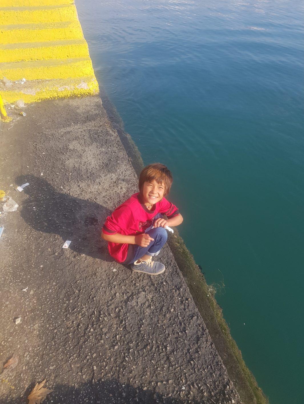 4.Bild: Ghazel am Hafen in hockender Position direkt am Wasser.